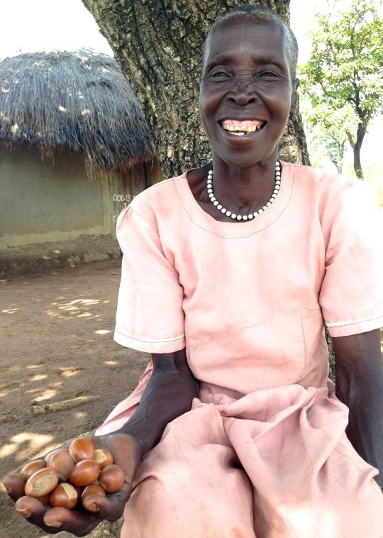 Stigende efterspørgsel på Sheanødder har givet Bitoreci Omara fra Norduganda ekstra indtægter, som går til mad, tøj og skolepenge